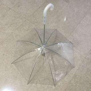 Almost New Dog Umbrella
