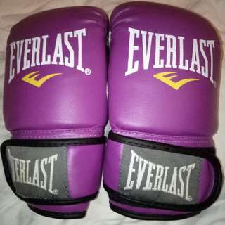 New Everlast Boxing Gloves