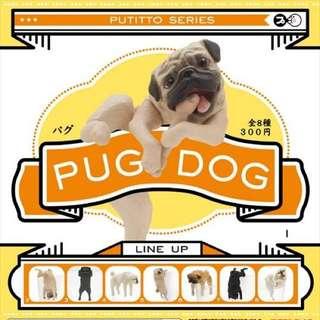 PUG DOG 狗杯緣子 扭蛋