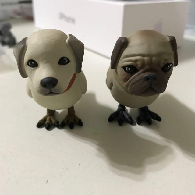 狗鳥 盒抽 拉布拉多