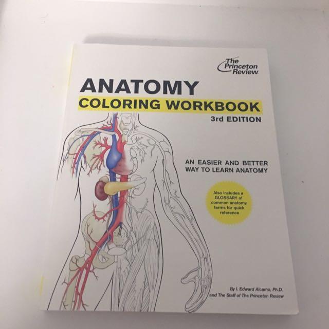 Anatomy Colouring Workbook