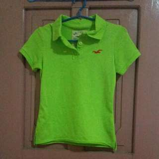 Hollister Polo Shirt