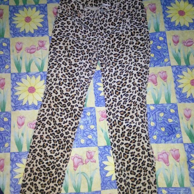 Cherokee Leopard Jeans