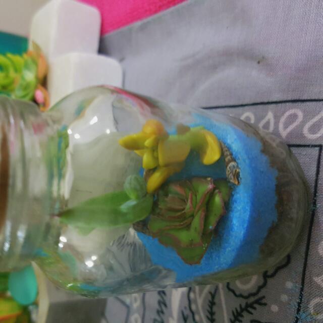 jar succulent creation