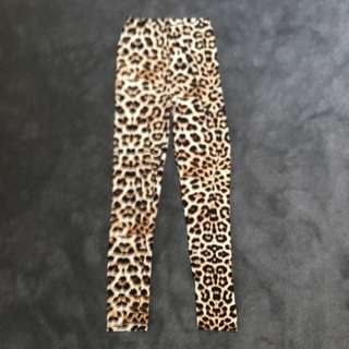 Leopard Tights Size S