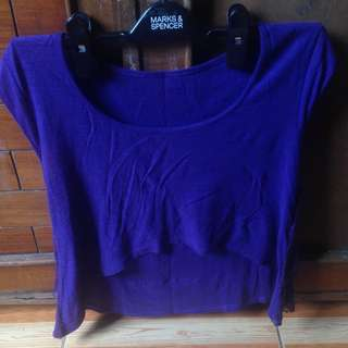 Purple Croptop Long Back