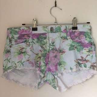 Ava & Ever Shorts