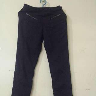Zara Pants /slacks NAVY BLUE