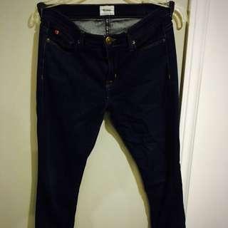 Dark Wash Hudson Skinny Jeans
