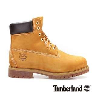 Timberland 6吋經典黃靴