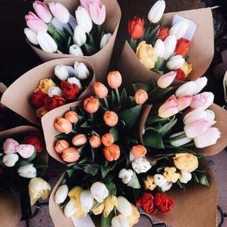Fresh Tulips here - Ftuhere