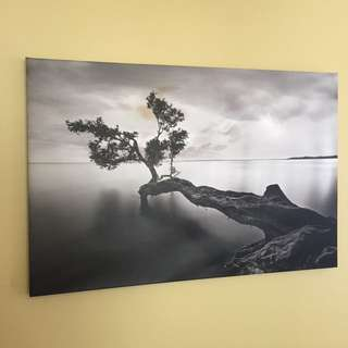 Black And White Tree Over Water Canvas Print