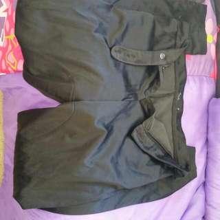 Max Shiny Dress Pants Size 12