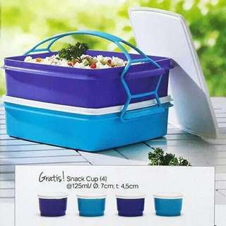 Tupperware Large Carry All Set