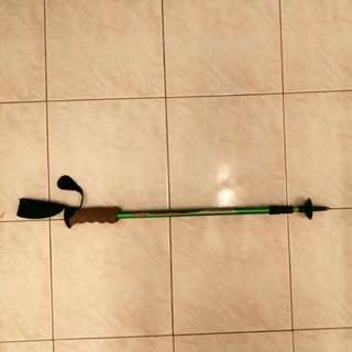 Coleman Anti shockTrekking Pole