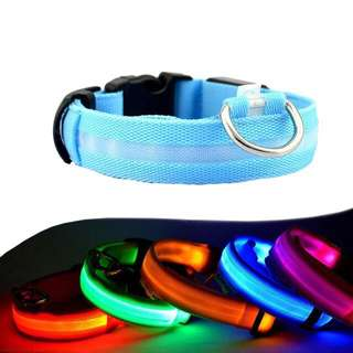 LED light up Pet Collar (PRE-ORDER)