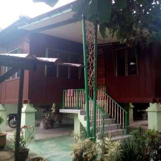 Rumah Dan Tanah Serta Kerbun 1 Ekar