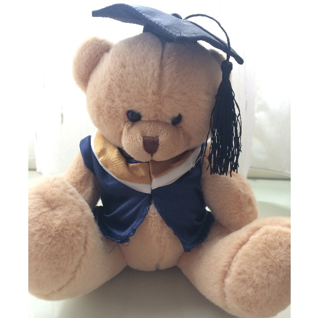 Boneka Wisuda / Graduation Bear