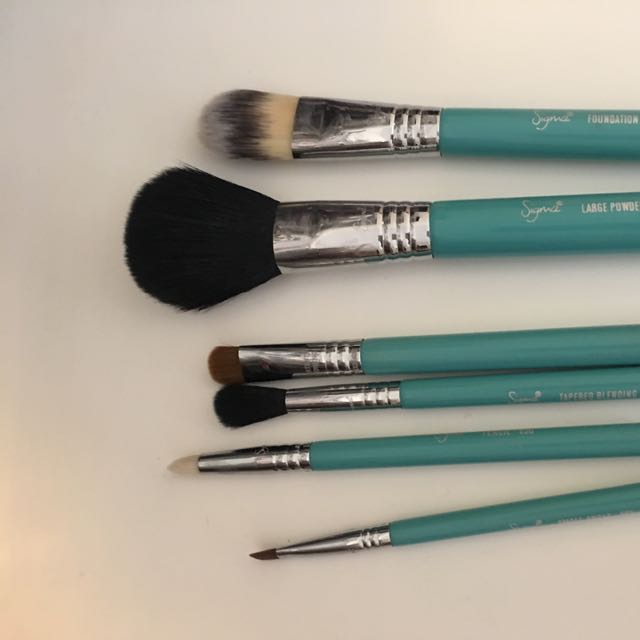 Sigma Travel Brush Set