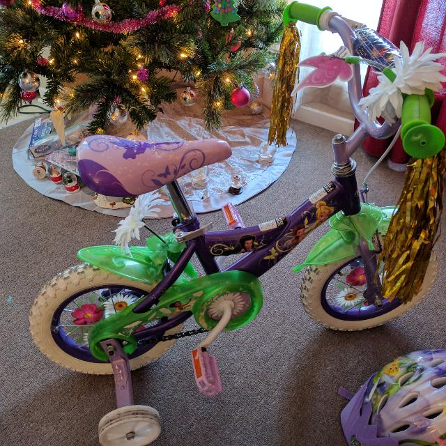 Toddler Tinker bell Bike And Matching Brand New Helmet
