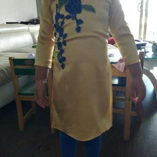 Brand New Vietnamese Traditional Dress