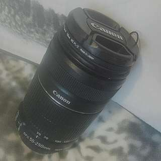 Canon 55-250mm f/4.0-5.6 IS II Lens
