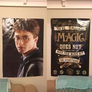 Harry Potter Posters X 2