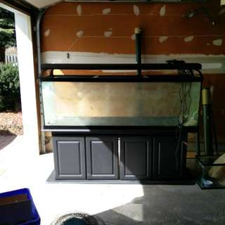200 Gallon Salt Water Tank