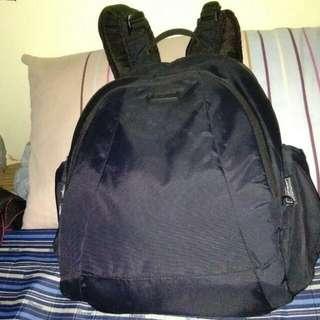 Original Pacsafe Bag