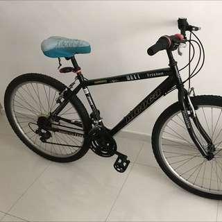 Cycle Mountain Bike - Aleoca - MTB - Trizion - Shimano TZ50 - Black - Great order - Cost $180
