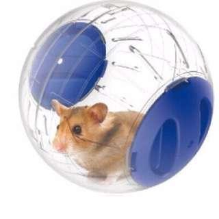 ►OS平價屋 寵物鼠12cm靜音運動水晶球/跑球/玩具球 黃金鼠/線鼠/紫倉/布丁/老公公倉鼠/楓葉鼠/蜜袋 透明外圈