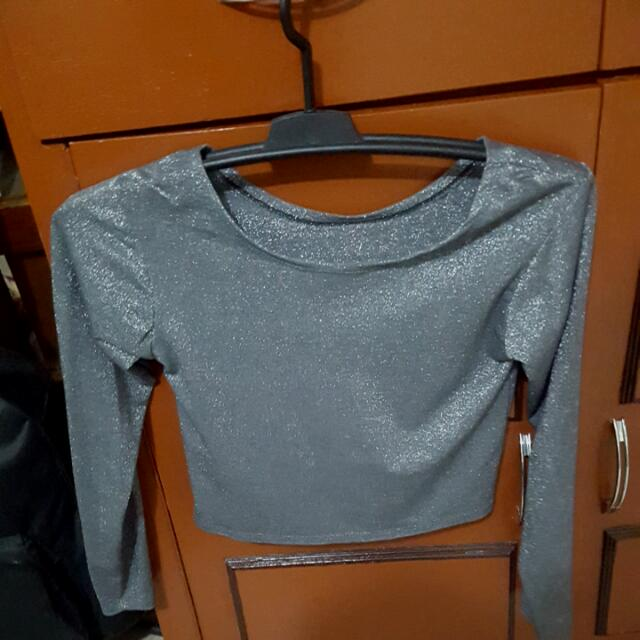 Sparkly Silver Cropped Top