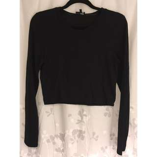 Wilfred Longsleeve Crop Top