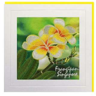 Frangipani Singapore Greeting Card