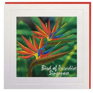 Bird of Paradise Singapore Greeting Card