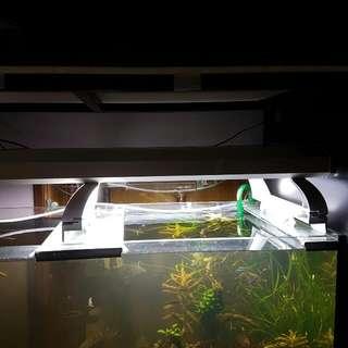 Aquazonic 2ft with 6 tubes