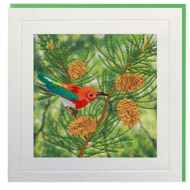 Bird with Pinecones Greeting Card