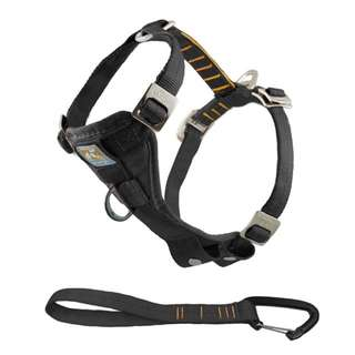Dog Harness and Seatbelt Attachment