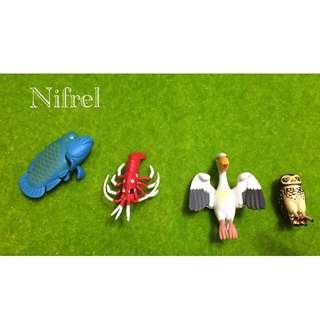 Nifrel 杯緣子 水族館