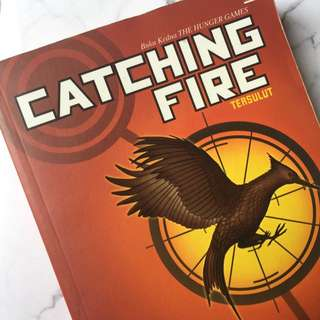Novel Catching Fire Suzanne Collins