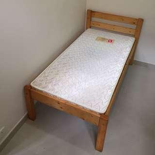 Small Bed + Mattress 細木床加海馬床褥
