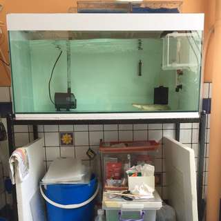 3ft Tank For Sale, Swap Or Trafe