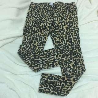 Sass & Bide Denim Leopard Print Jeans