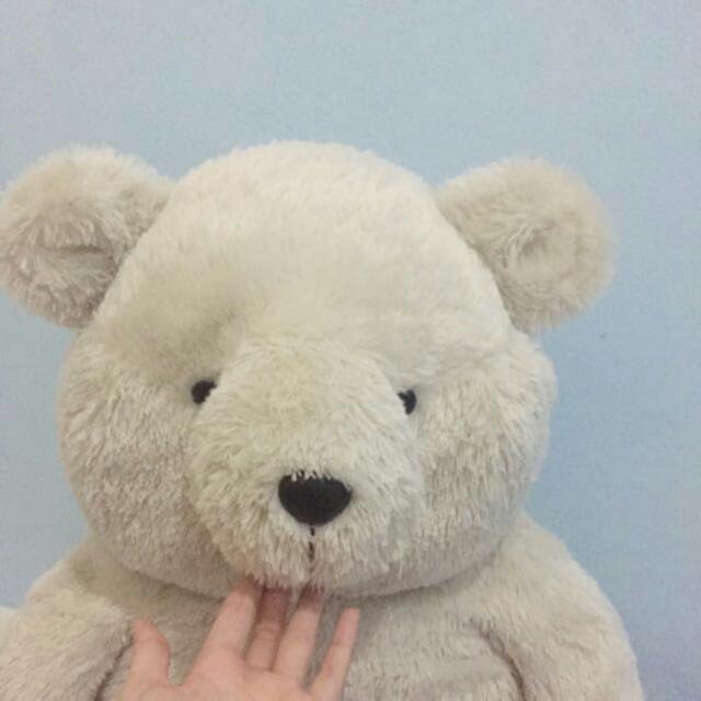 Teddy Bear 'Teddy House'