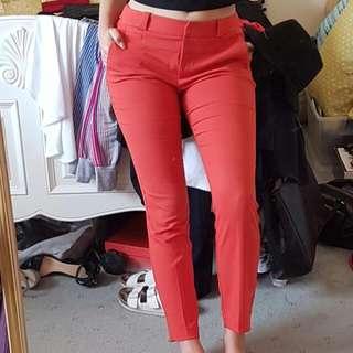 Cue Pants