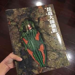 昆蟲大師攝影集