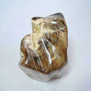 木化玉&木化石(17)