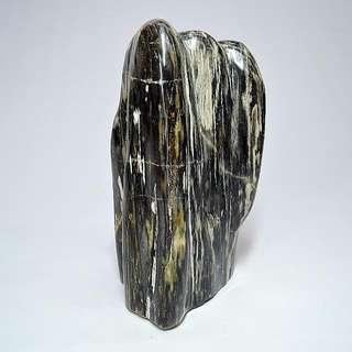 木化玉&木化石(18)