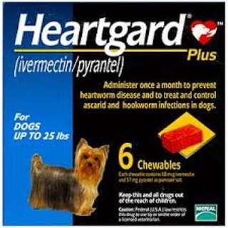 Heartgard Small 心絲蟲藥