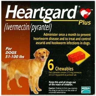Heartgard Large 心絲蟲藥